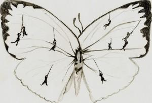 inside a butterfly's mind